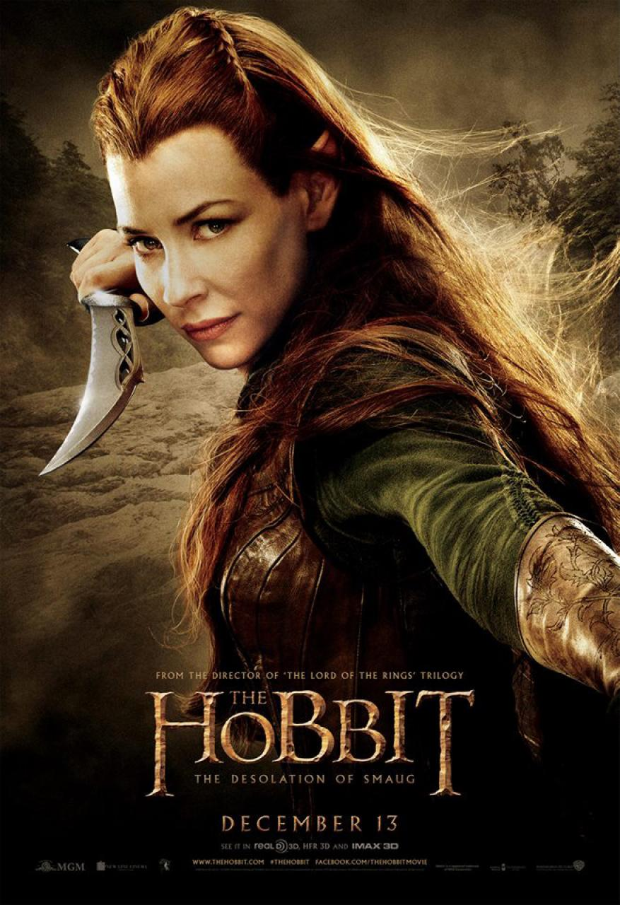 hobbit_the_desolation_of_smaug_poster_2013_01.jpg
