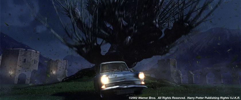 Magic Tree Car Air Freshener Review