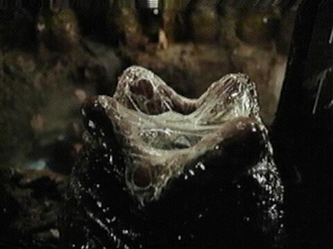 xenomorph kaijumatic