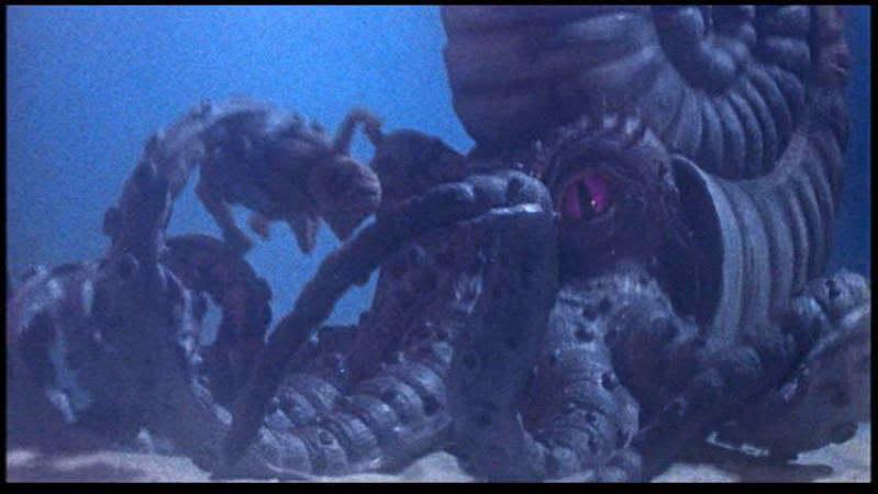 ammonite_1961_01.jpg