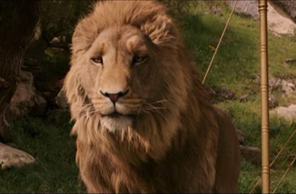 aslan_2005_01.jpg