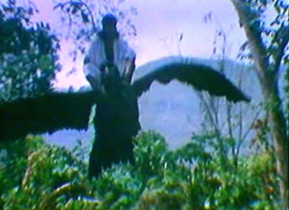 bird_1988_01.jpg