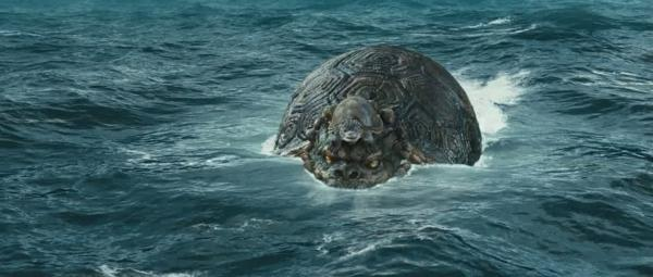 black_tortoise_2011_01.jpg