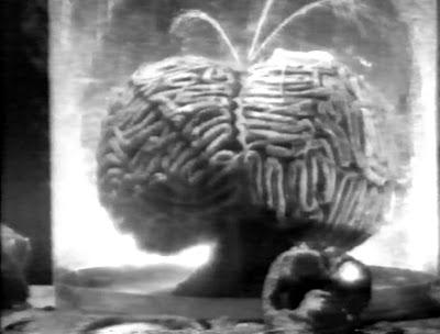 brain_1960_01.jpg