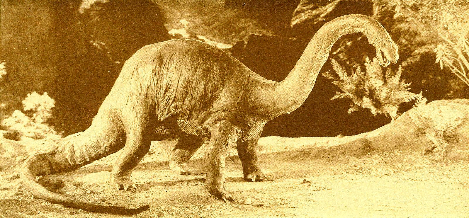 brontosaurus_1925_02.jpg