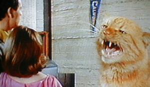 cat_1965_01.jpg