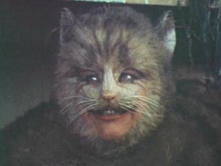 cheshire_cat_1972_01.jpg