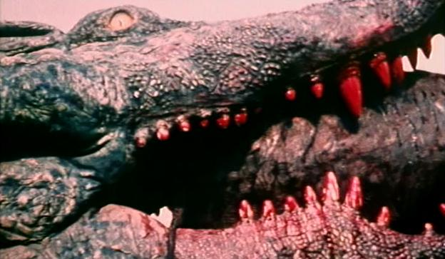 crocodile_1979_01.jpg