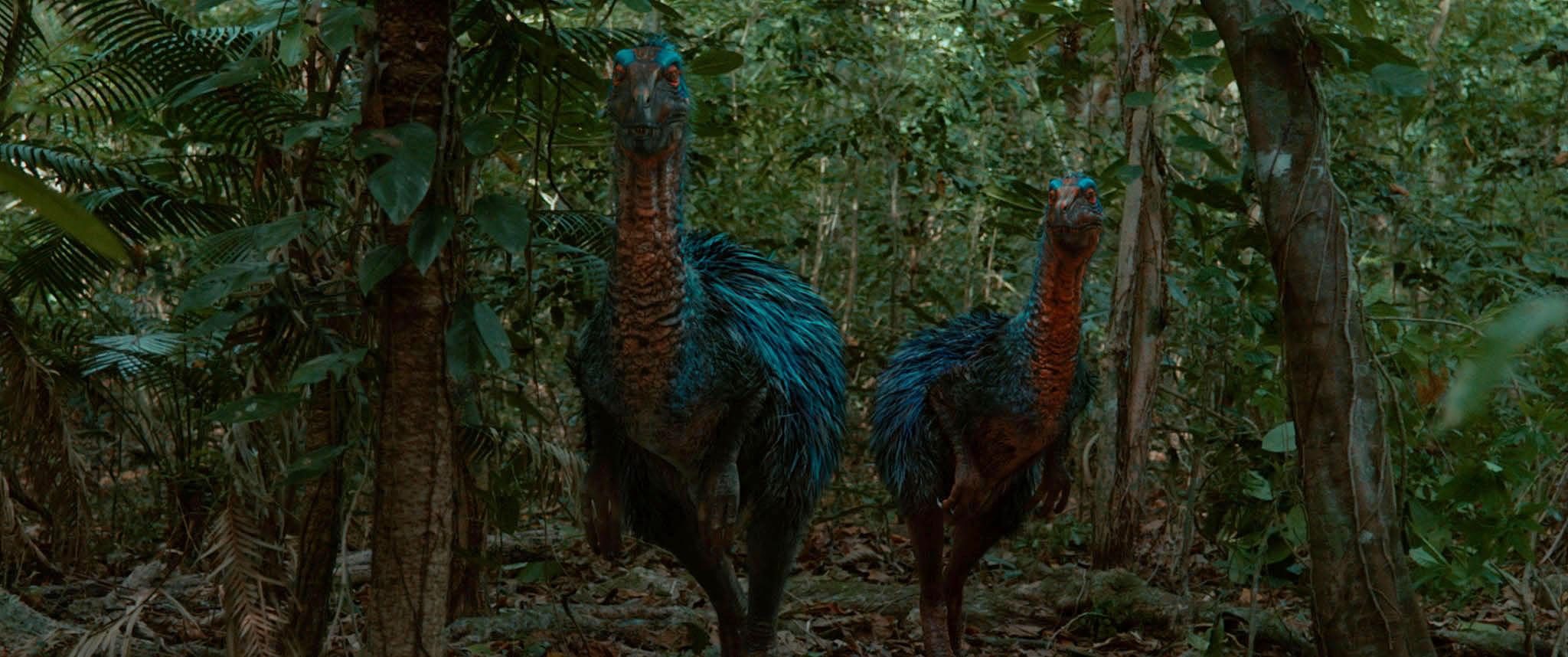 dromaeosaurus_2014_01.jpg