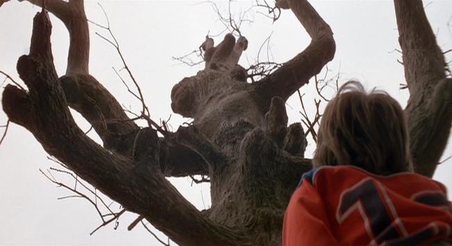 gnarled_tree_1982_01.jpg