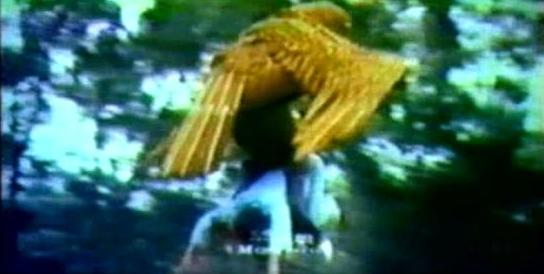hawk_1974_01.jpg
