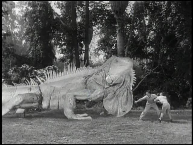 iguana_1957_01.jpg