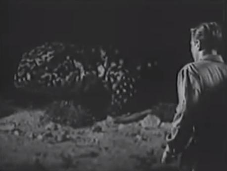 lizard_1954_02.jpg