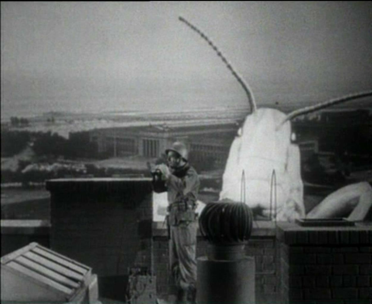 locust_1957_01.jpg