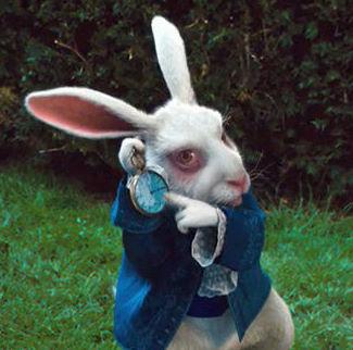 White rabbit the kaijumatic - Conejo de alicia en el pais de las maravillas ...