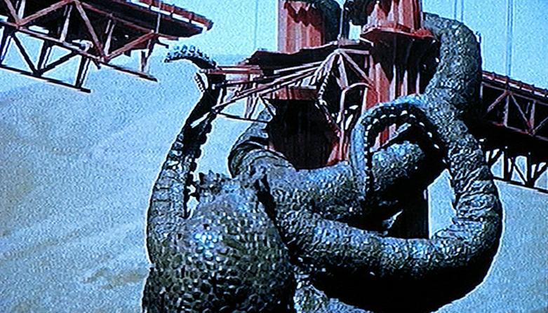 octopus_1955_02.jpg