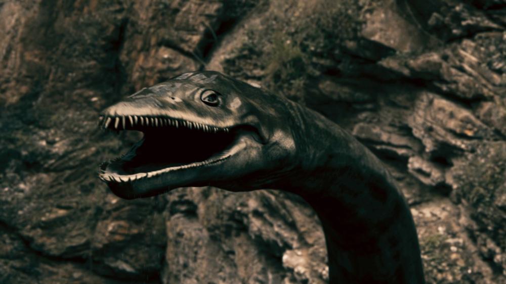 plesiosaurus_2012_01.jpg