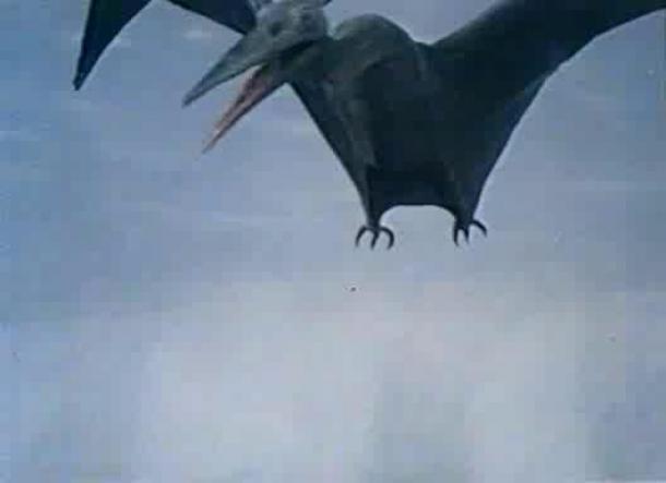pteranodon_1955_02.jpg