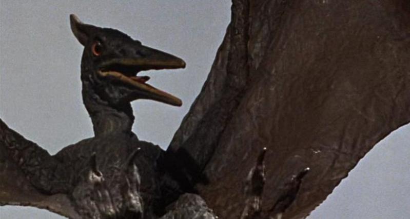 pteranodon_1966_01.jpg