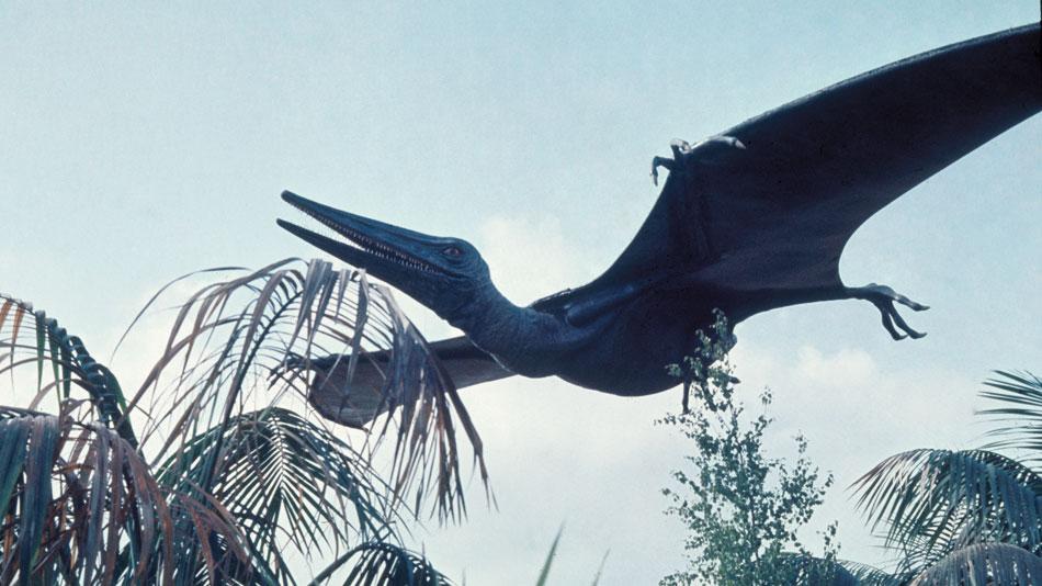 pterodactyl_1975_01.jpg