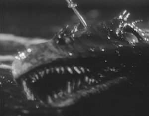 sea_serpent_1957_01.jpg
