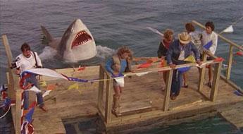 shark_1981_01.jpg