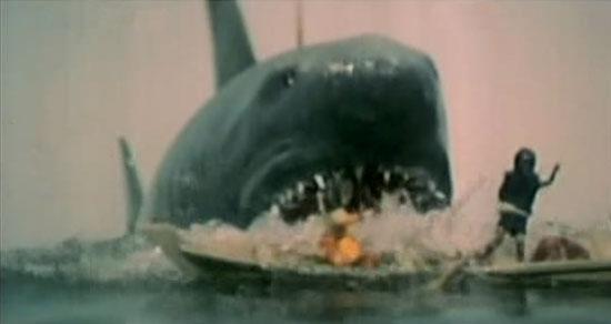 shark_1996_01.jpg