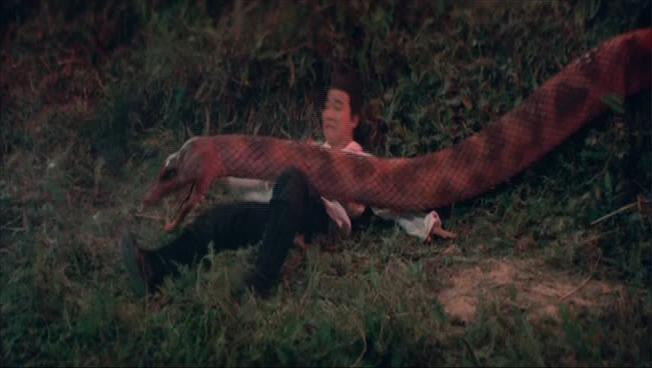 snake_1977_02.jpg