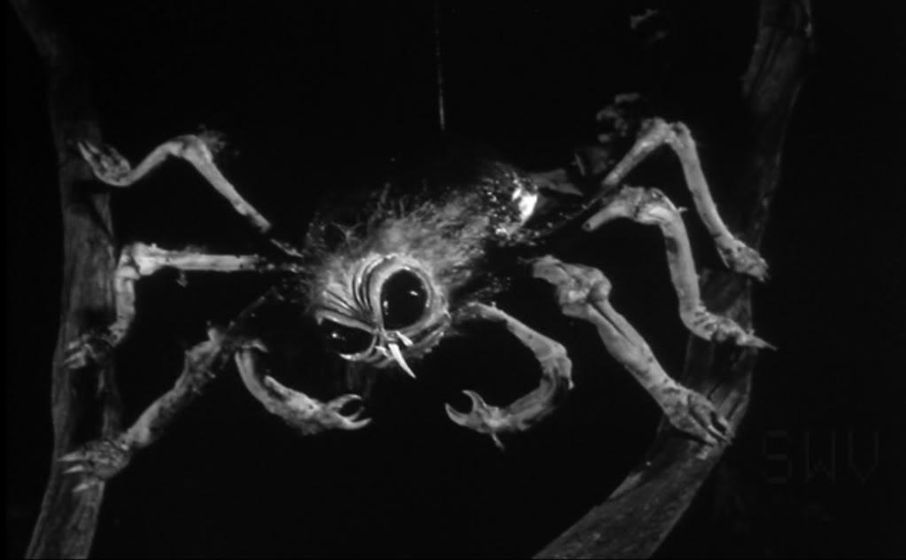 spider_1960_01.jpg