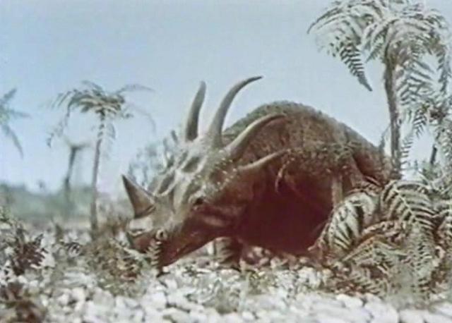 styracosaurus_1955_01.jpg