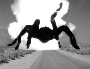 tarantula_1955_01.jpg