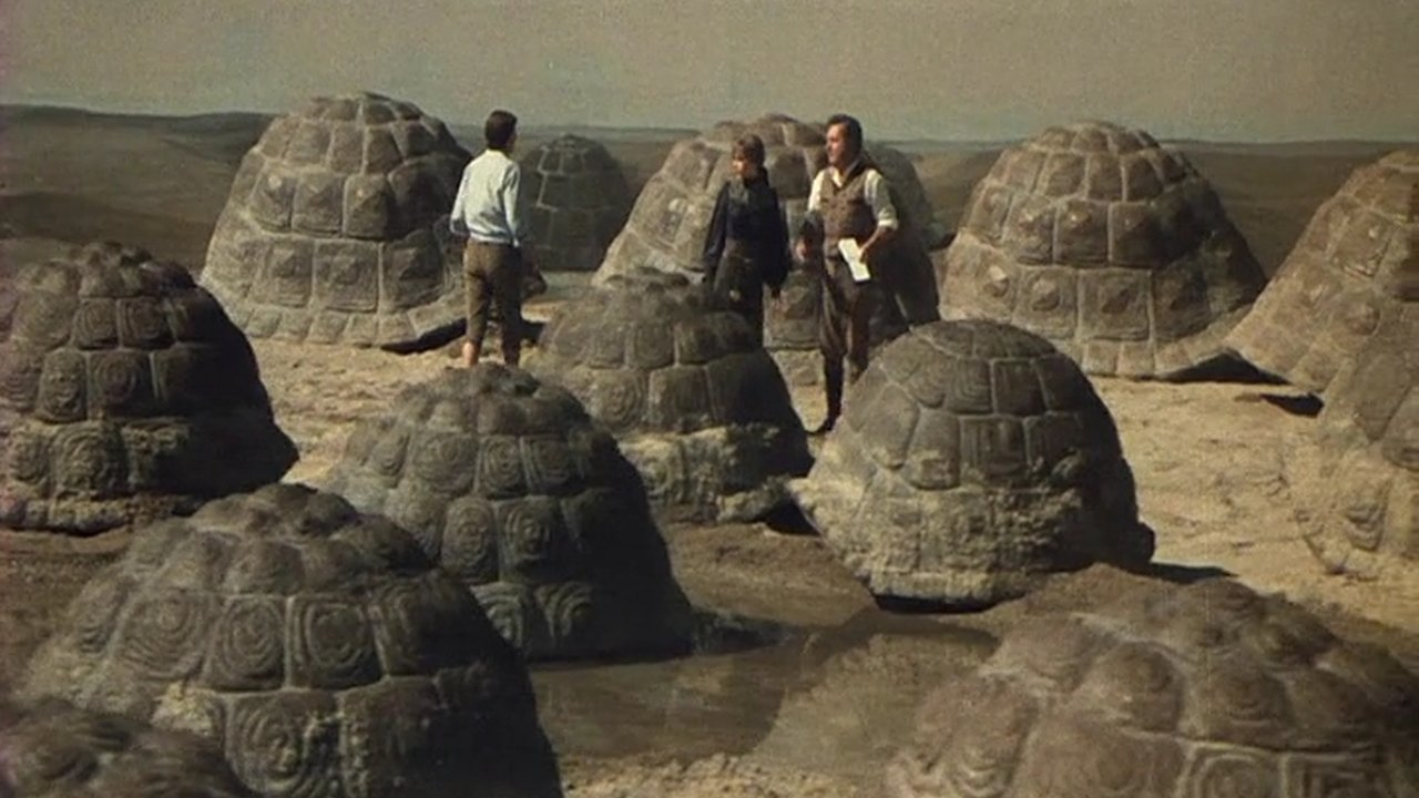 tortoise_1978_01.jpg