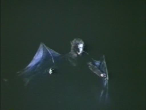 vampire_1982_01.jpg