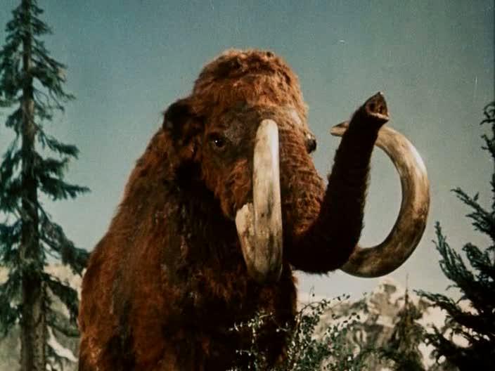 mammoth_1955_01.jpg
